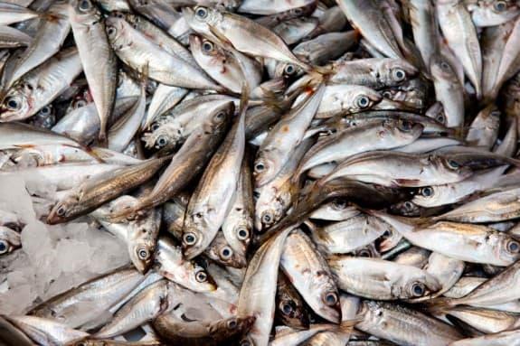 sea foods- health benefits