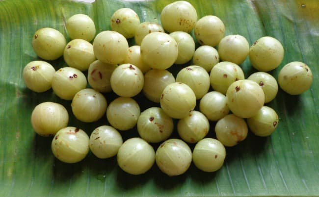 health benefits of gooseberry