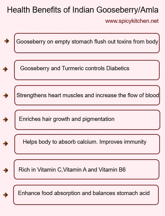 indian gooseberry health benefits