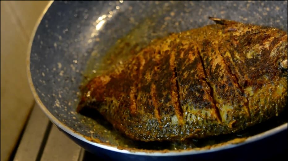 fishmollee4